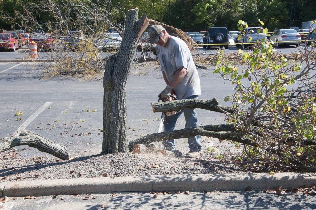 Construction crews work Monday to remove trees from Parking Lot C, near the Physical Activities Center.